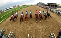 Preakness Stakes, Black Eyed Susan Recipe, Gidday-Up